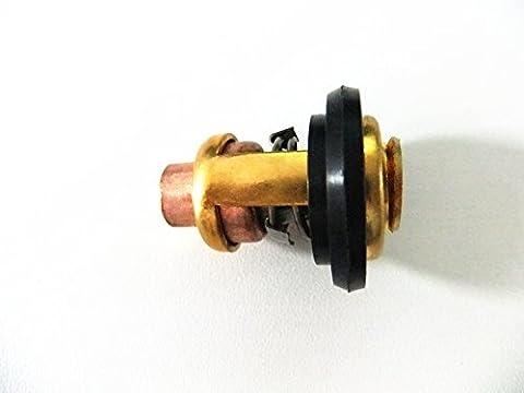 Moteur de Bateau Thermostat 6G8-12411-00-00 6G8-12411-03-00 66M-12411-00-00 pour Yamaha 4-Temps 5hp - 9.9hp 15hp 25hp -100hp Moteurs Hors-bord