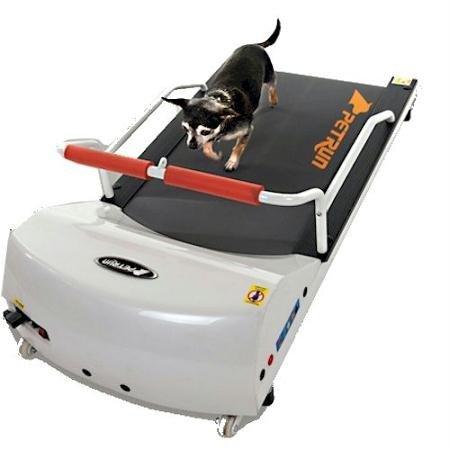 GoPet PR700 Dog Tread Mill - Toy Breeds - White