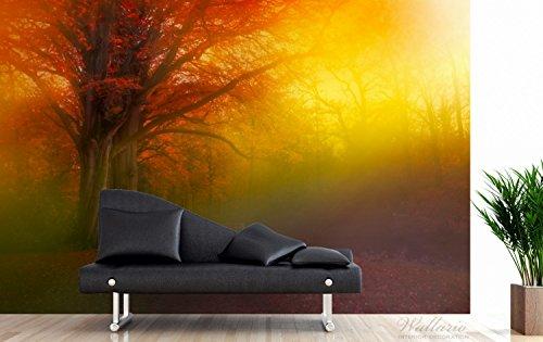 Wallario Premium XXL Vliestapete Bunter Herbst – Waldlandschaft bei Nebel in Regenbogenfarben – Größe: 400 x 267 cm