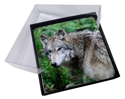 Advanta - Coaster Set 4X Grauer Wolf Bild Setzer gesetzt Wolf Coaster Set