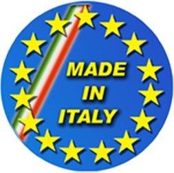 Eurosystems Carry Briggs & Stratton 450 E-Serie Motorschubkarre selbstfahrend, hergestellt in Italien - 6