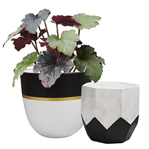 La Jolíe Muse Ceramic Plant Flower Pots - 16cm Herb Succulent Planter Pack 2 White Geometric Plant Pots for Indoor Outdoor Balcony Garden, Home Decor Matte Finish