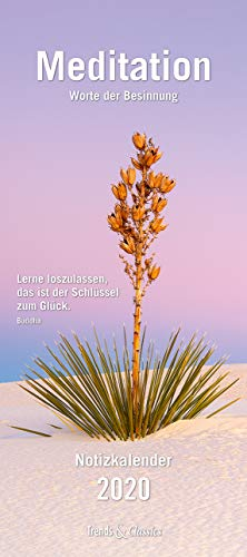 Meditation Notizkalender 2020 - Wandkalender - mit Extraspalte für Geburtstage - Format 22 x 49 cm: Worte der Besinnung