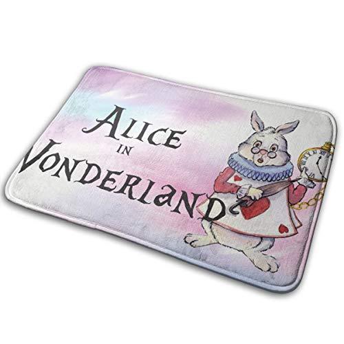 ür Teppich Alice im Wunderland Indoor Outdoor Badezimmer Dekor Fußmatten Gummi rutschfeste 40 X 60 cm ()