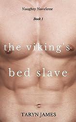 The Viking's Bed Slave (Naughty Novelette Book 1)