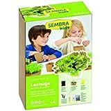 SEMBRA Mini kit - Lechuga maravilla de verano, 17 x 9.5 x 25.5 cm