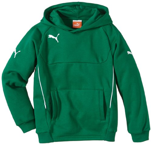 PUMA Kinder Pullover Hoody, Grün (Power Green-white), 164, 653979 05 (Power-kinder Hoodie)
