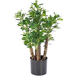 artplants - Kunst Geldbaum/Dickblatt TIDO, 480 Blätter, grün, 60 cm - Künstlicher Zimmerbaum/Deko Topfpflanze