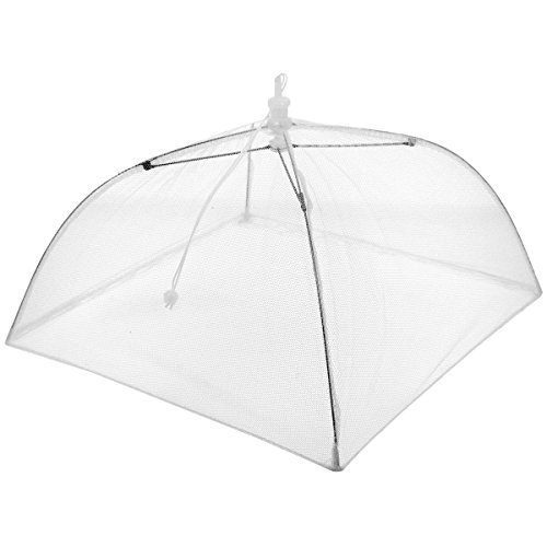 Promobo - Cloche Parapluie Couvercle Pliable Idéal Gâteau Fromage 31 x 31cm