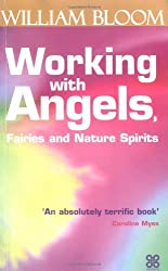 Working with Angels, Fairies and Nature Spirits by William Bloom (2002-09-06)
