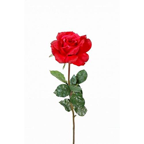 fleur coupee synthetique rose colin single natural touch - h : 70