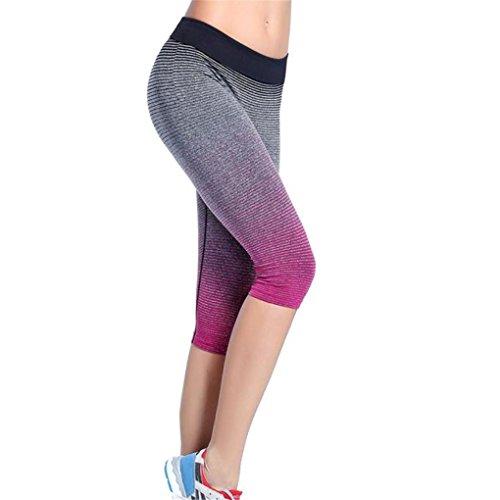 Italily-Le donne Gradient Moda Sport Yoga pantaloni elastici collant a compressione in esecuzione pantaloni (Size:L, Rosa caldo)