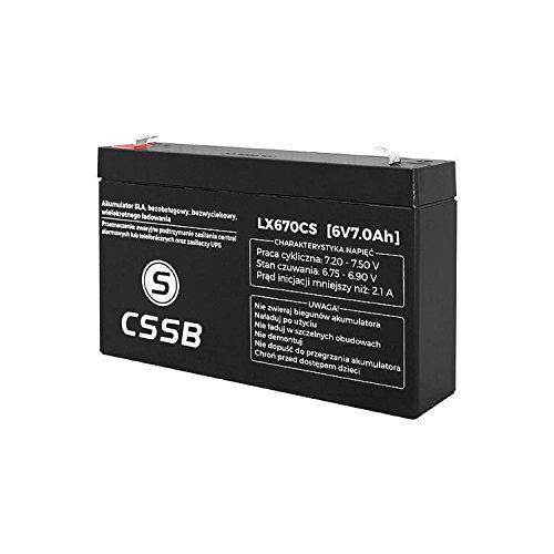 CSSB, batteria gel AGM per auto, 6.0V