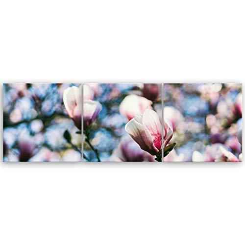 ge Bildet® hochwertiges Panorama Leinwandbild XXL - Magnolie - 150 x 50 cm mehrteilig (3 teilig) 3004II