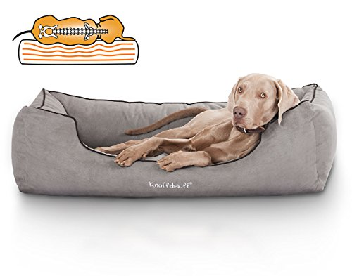 Knuffelwuff Orthopädisches Hundebett aus Velour Amelie waschbar Hunde ortho bed Hundesofa Hundekorb Hundekörbchen orthopädisch memory XL 105 x 75cm Grau