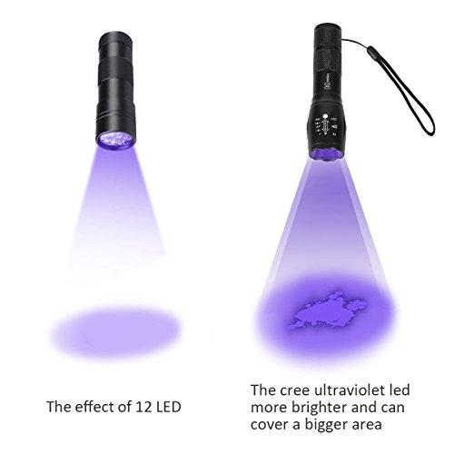 Didisky Linterna Ultravioleta Led  Brillo Alto 3 Modos UV Luz Lámpara  Detectar manchas de orina de mascotas Buscador de Chinches Perro/Gato Quitamanchas  Luz negra 395nm (Baterías no incluidas)