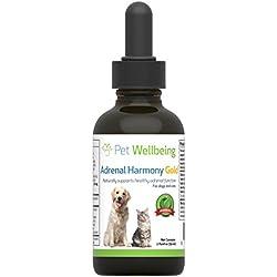 Pet Wellbeing - Neben Harmonie Gold Für Hunde- Natürliche Unterstützung Für Neben Dysfunktion und Cushing - 2 Unzen (59 Milliliter)