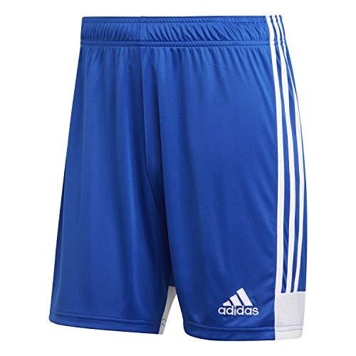 adidas Herren TASTIGO19 Shorts, Bold Blue/White, XL