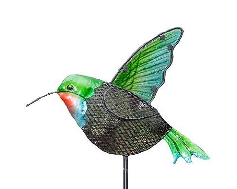 Your Heart Mangeoire pour oiseaux en forme de colibri, 43Inch s Delight