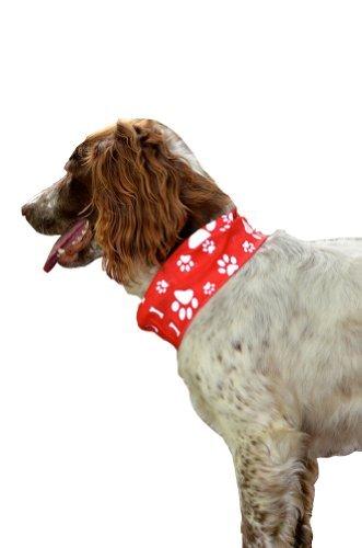 Pañuelo para perro rojo reflectante con estampado de huellas de pata y huesos - RUFFNEK - Seguro y visible