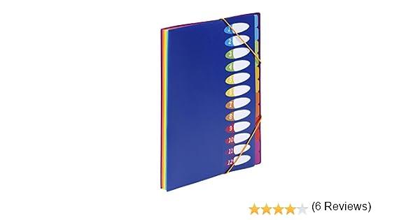 Viquel Happy Fluo Trieur accord/éon avec porte /étiquette Trieur 12 compartiments en plastique Porte document format A4 Organisateur de document extensible