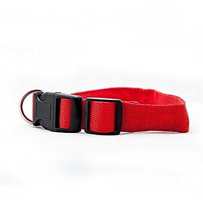 4yourpet LED Halsband, Sicherheitshalsband für Hunde