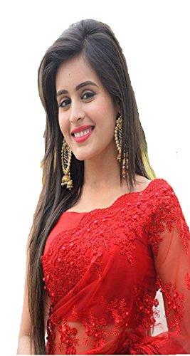Vinayak Textile Latest Design Women\'s Party Wear Net Worked Saree