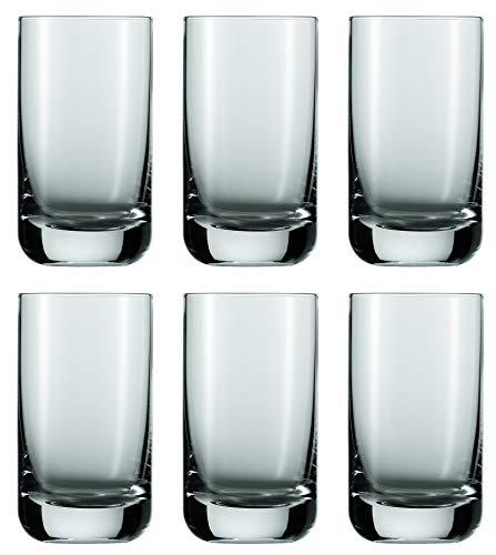 Schott Zwiesel Convention 12 Wasserbecher, Glas, transparent 21.9 x 15.4 x 12.5 cm, 6-Einheiten