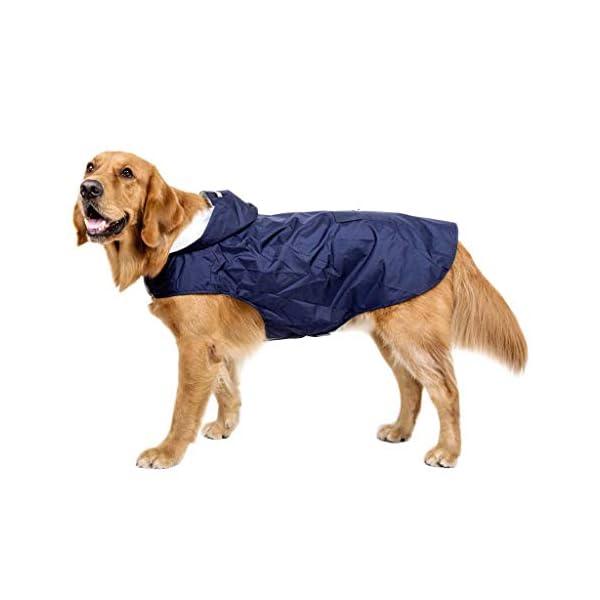 JOYKK Impermeable para Perros con Capucha Poncho Impermeable para Lluvia Impermeable Ropa de Lluvia Ropa Reflectante… 4