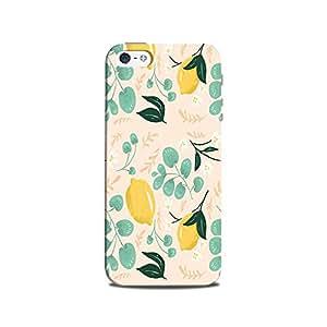 Mikzy Colourful Mountain Sun & Sea Effect Printed Designer Back Cover Case for Iphone 5/5S (MultiColour)
