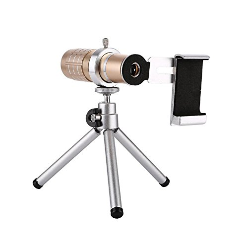 LXYFMS 12-fache Tele-Handy-Teleskop-Kopf-High-Definition-Outdoor-Single-Rohr-Foto-Metall-Gläser Teleskop (Color : Rose Gold) (Glas Rose-rohr)