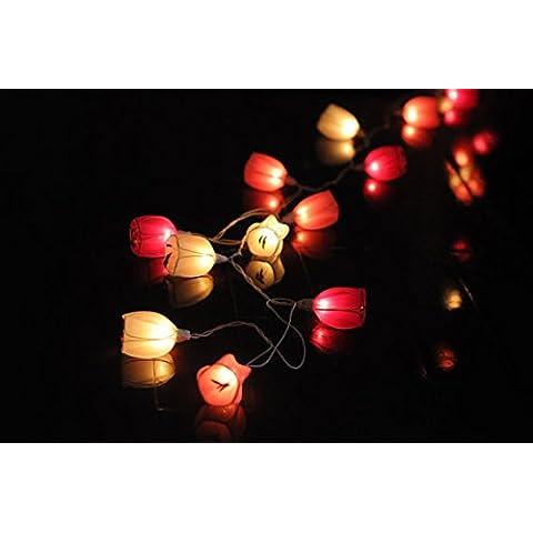 Nene Tulip Lanterna Camera Nuziale Decorazione Luce Albero Di Natale Anniversario Di Matrimonio Sting Luci Per Interni E Porta Fuori Uso,Espresso Marrone