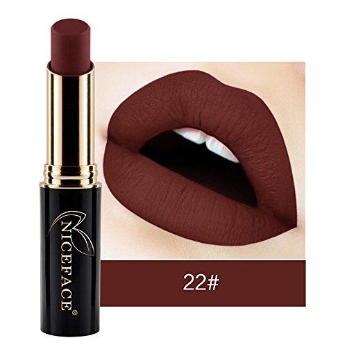 Lippenstift Mit Lipliner,EUZeoFrauen Lippenstift Lip Matte flüssiger Lippenstift wasserdichte Lip Gloss Make up 24 Farben Fashionable Colors Long Lasting Lipsticks (J2)