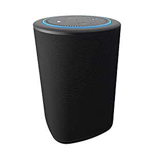 VAUX Cordless Home Speaker + Portable Battery for Amazon Echo Dot Gen 2 Gray/Ash (BLACK)
