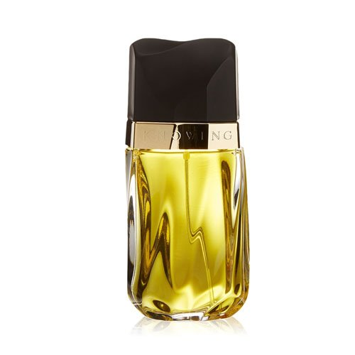 estee-lauder-knowing-eau-de-parfum-for-women-75-ml
