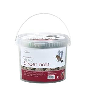 Chapelwood Suet Balls 35 Tub from Chapelwood