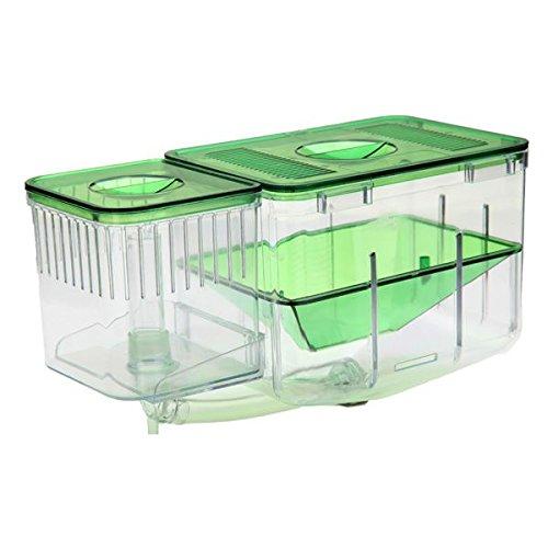 aquarium-nursery-automatische-fisch-zucht-system