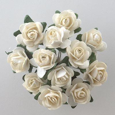 Carta Tea Rose, colore: panna (Confezione da 144)