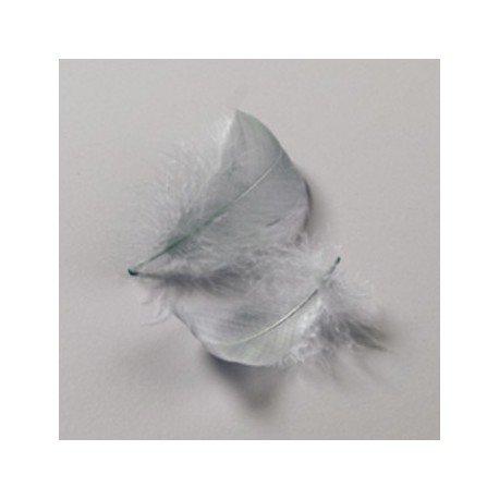 Plumes décoratives de 8 à 10 cm, env. 110 plumes de 8 à 10 cm, 10 g
