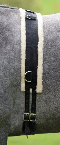 Economy Nylon Roller with Fleece lining, including Girth, in Black, Size: Full (Warmblut)