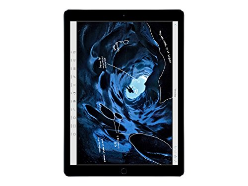 Apple iPad Pro ML0T2LL/A Tablet (256GB, 12.9 Inches, WI-FI) Space Grey, 4GB RAM Price in India