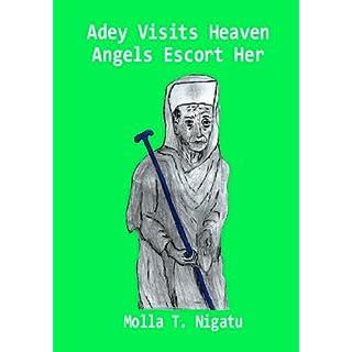 Adey Visits Heaven - Angels Escort Her (English Edition)