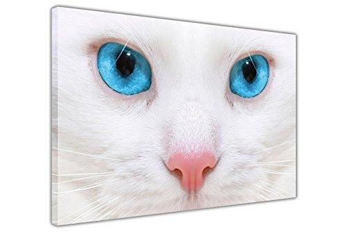 Weiße Katze mit blauen Augen auf Rahmen Leinwand Bilder Animal Art Wand Home Dekoration Prints, blau / weiß, 02- A3 - 16