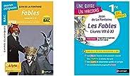 BAC de français 2020, Les Fables de la Fontaine, texte et explication