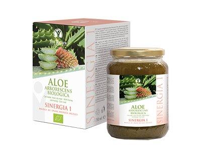 Maison Joseph Aloe Arborescens et miel (750ml) recette père Zago