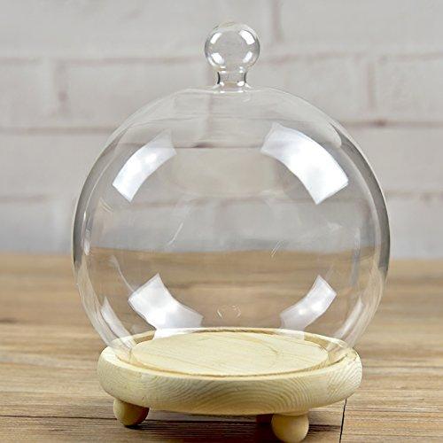 Set de 2botes de campana Bell de cúpula de cristal terrario Air car