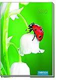 Taschenkalender 2019 Marienkäfer A6 Buchkalender Taschenterminer -