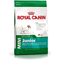 Royal Canin Hundefutter Mini Junior 33, 2 kg, 1er Pack (1 x 2 kg)