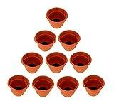 Things2Die4Set di 10vasi Ariana Fiamma Arancione d' irrigazione, 20,3cm