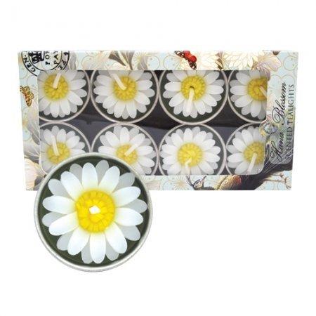8-Handmade-fairtrade-Jasmin-scented-Daisy-tealight-candle-gift-set